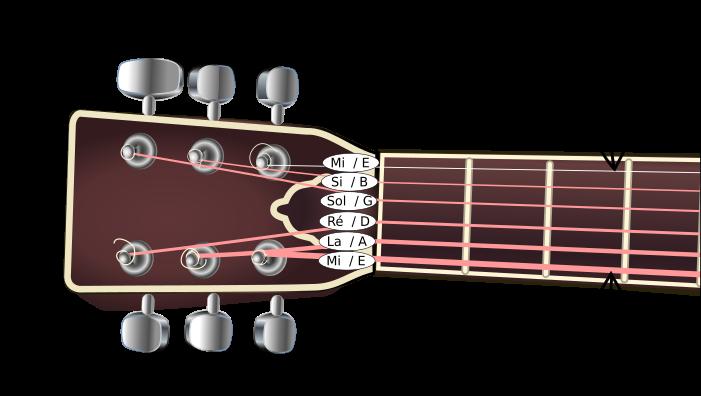 notes des cordes d'une guitare